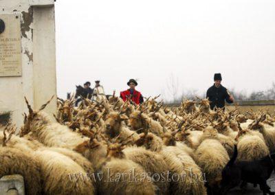 2007 Pásztoradvent 15