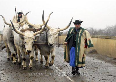 2007 Pásztoradvent 26