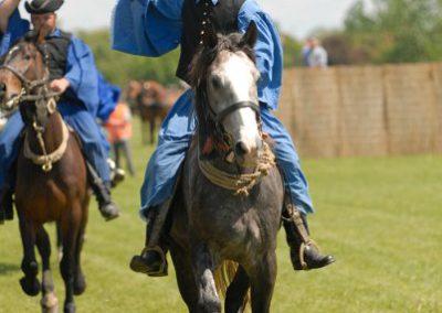 2008 Hortobágyi lovasnapok 10