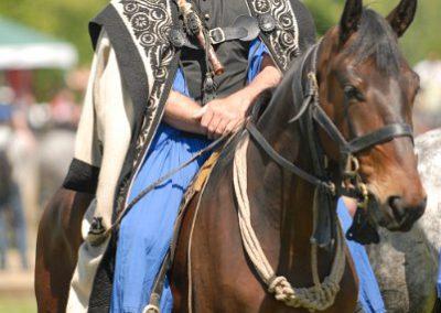 2008 Hortobágyi lovasnapok 13