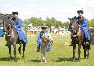 2008 Hortobágyi lovasnapok 15