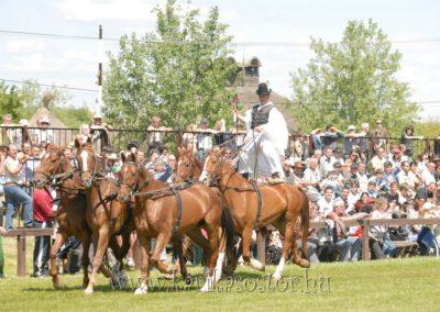 2008 Hortobágyi lovasnapok 17