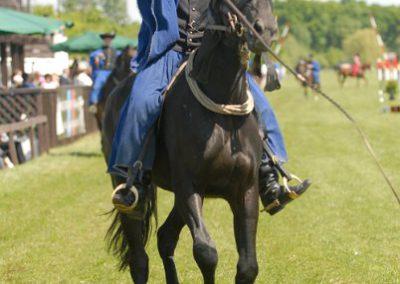 2008 Hortobágyi lovasnapok 30