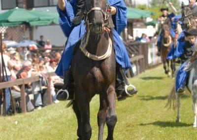 2008 Hortobágyi lovasnapok 33