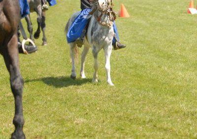 2008 Hortobágyi lovasnapok 34