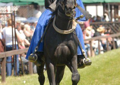 2008 Hortobágyi lovasnapok 45