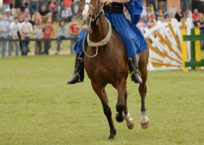 2008 Hortobágyi lovasnapok 60