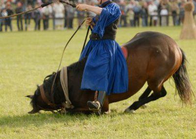 2008 Hortobágyi lovasnapok 93