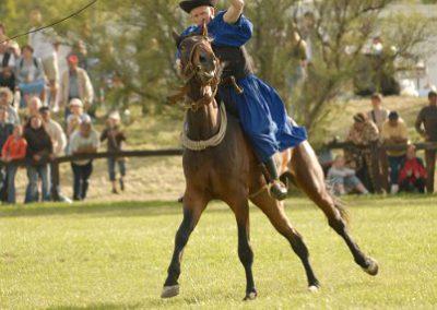 2008 Hortobágyi lovasnapok 95
