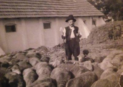 Hegedűs László gyűjtése 94